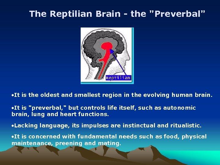 The Reptilian Brain - the