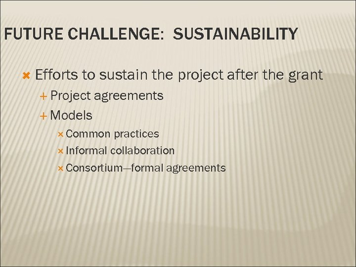 FUTURE CHALLENGE: SUSTAINABILITY Efforts to sustain the project after the grant Project agreements Models