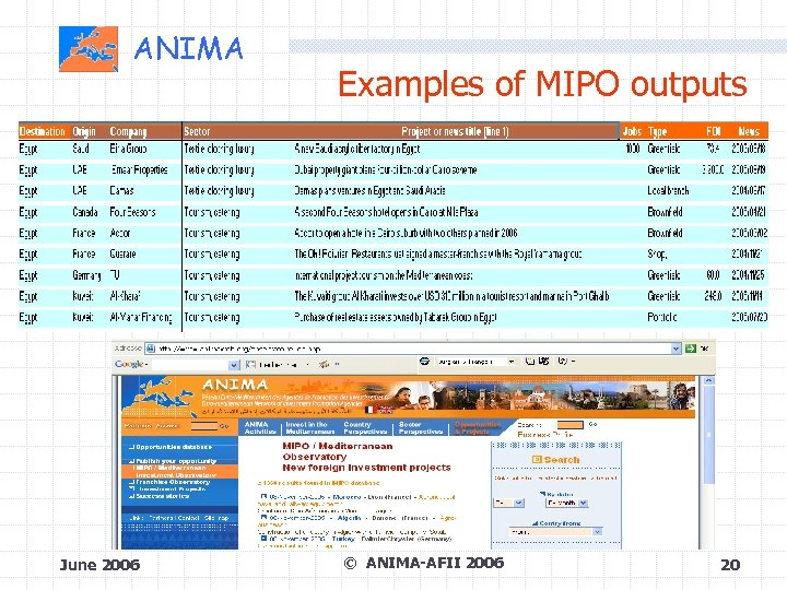 ANIMA June 2006 Examples of MIPO outputs © ANIMA-AFII 2006 20