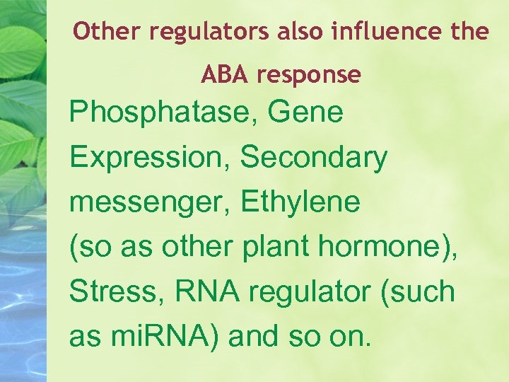 Other regulators also influence the ABA response Phosphatase, Gene Expression, Secondary messenger, Ethylene (so