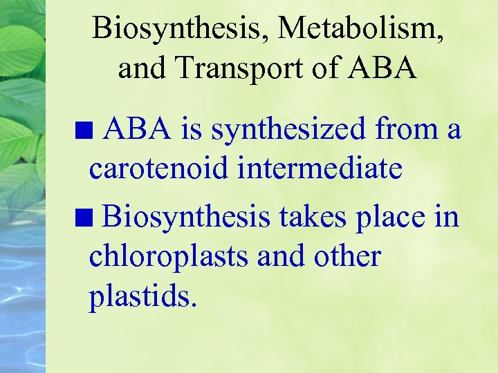 Biosynthesis, Metabolism, and Transport of ABA is synthesized from a carotenoid intermediate Biosynthesis takes