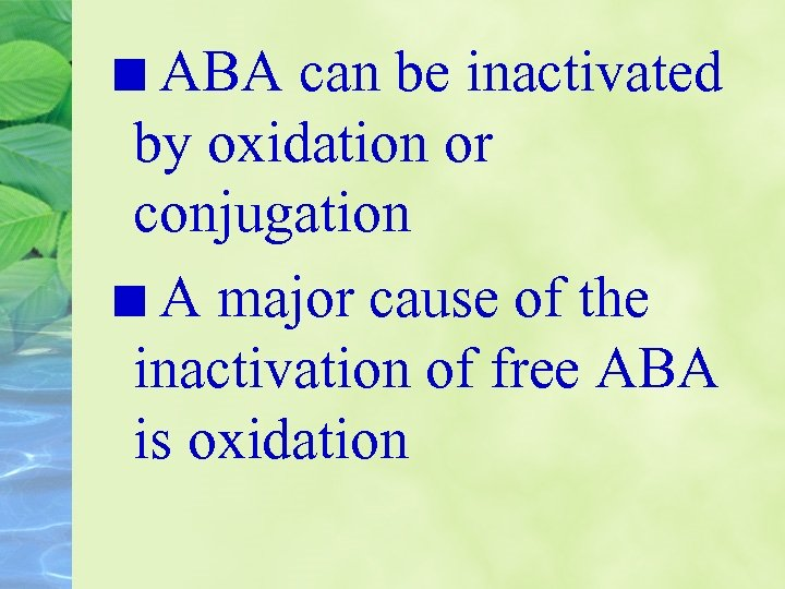 ABA can be inactivated by oxidation or conjugation A major cause of the inactivation