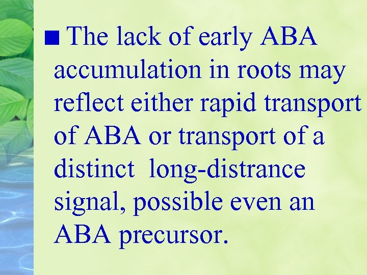 The lack of early ABA accumulation in roots may reflect either rapid transport of