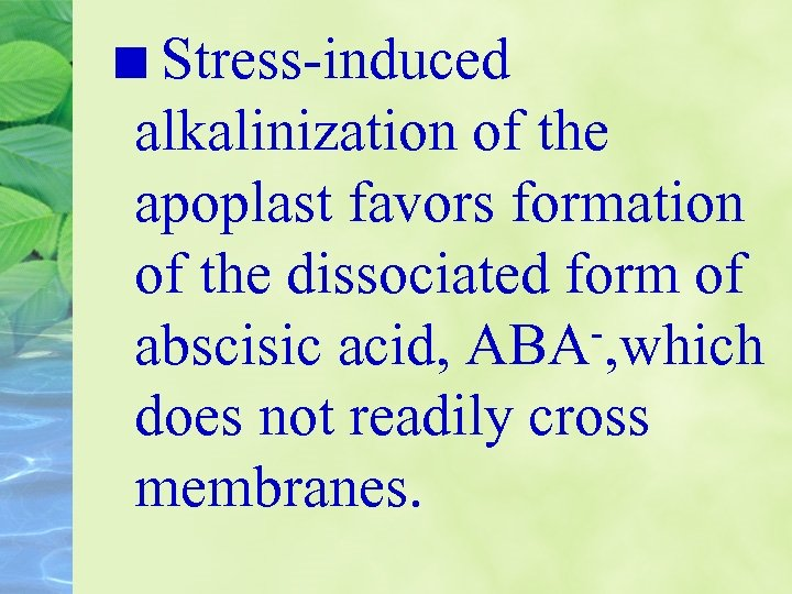 Stress-induced alkalinization of the apoplast favors formation of the dissociated form of -, which