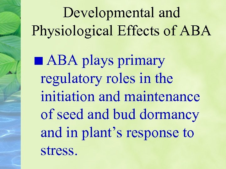 Developmental and Physiological Effects of ABA plays primary regulatory roles in the initiation and