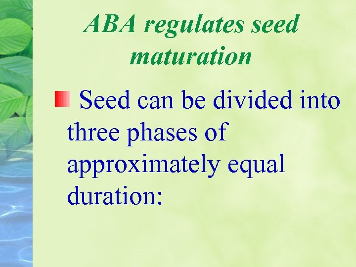 ABA regulates seed maturation Seed can be divided into three phases of approximately equal