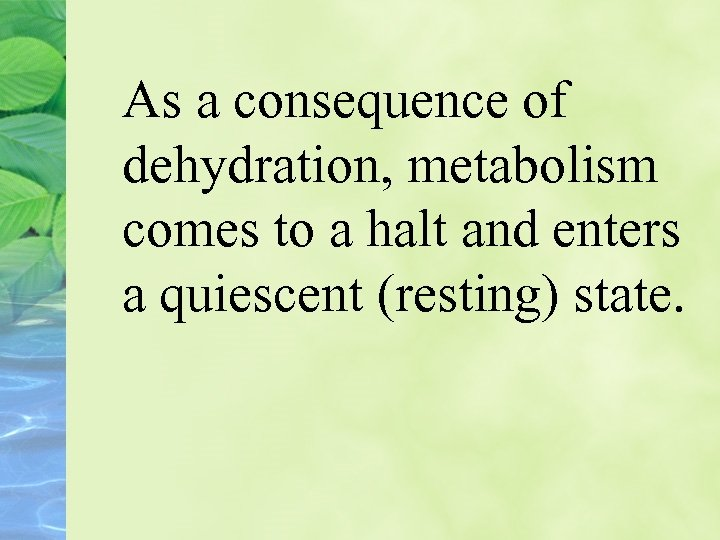 As a consequence of dehydration, metabolism comes to a halt and enters a quiescent