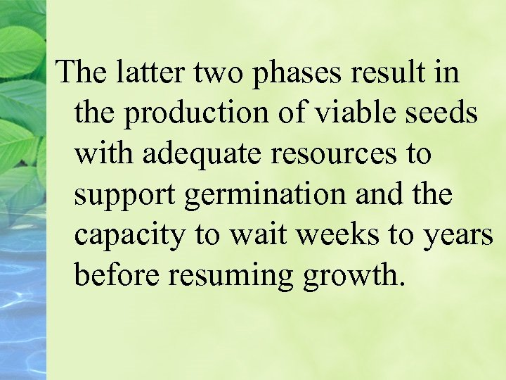 The latter two phases result in the production of viable seeds with adequate resources