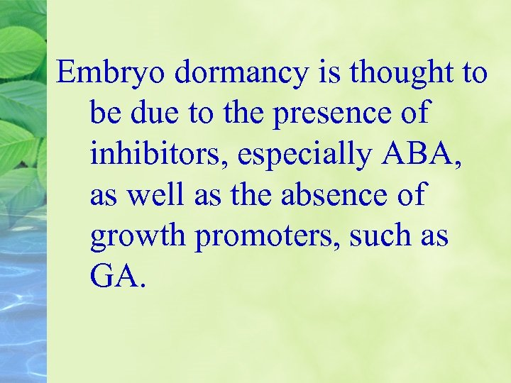 Embryo dormancy is thought to be due to the presence of inhibitors, especially ABA,