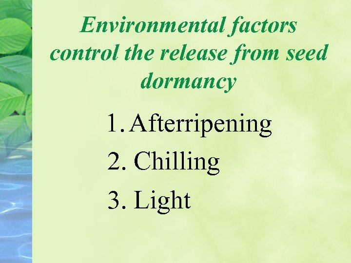 Environmental factors control the release from seed dormancy 1. Afterripening 2. Chilling 3. Light