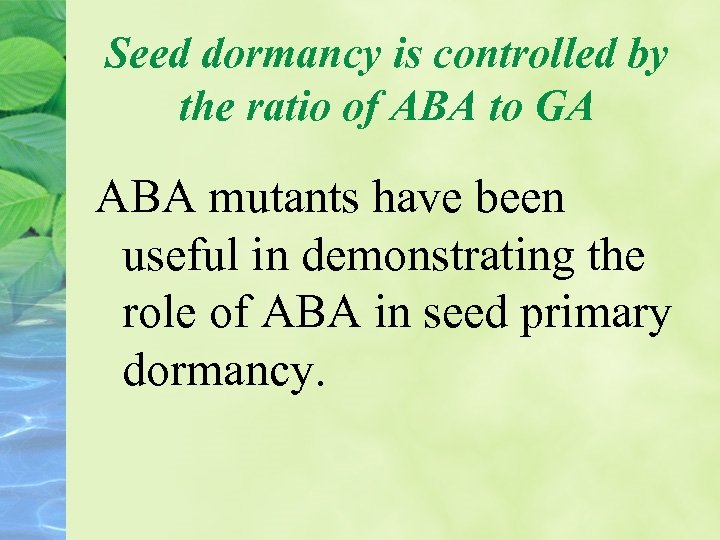 Seed dormancy is controlled by the ratio of ABA to GA ABA mutants have