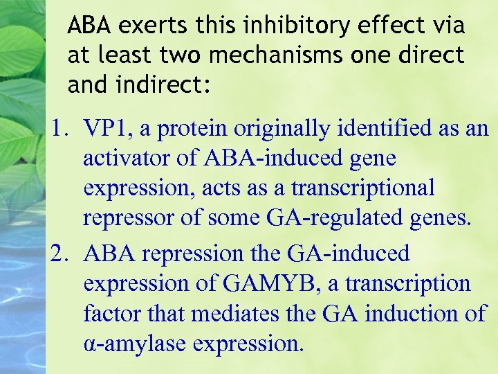 ABA exerts this inhibitory effect via at least two mechanisms one direct and indirect: