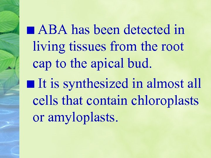 ABA has been detected in living tissues from the root cap to the apical
