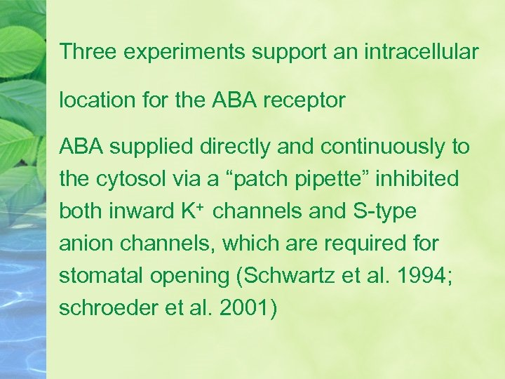 Three experiments support an intracellular location for the ABA receptor ABA supplied directly and