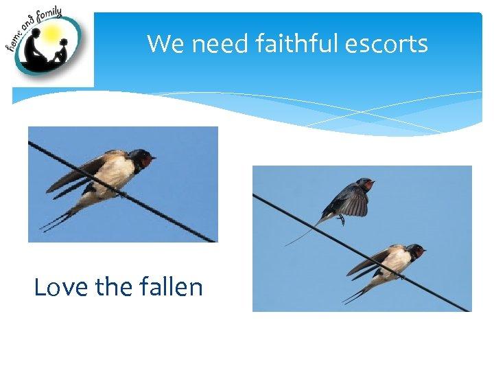 We need faithful escorts Love the fallen