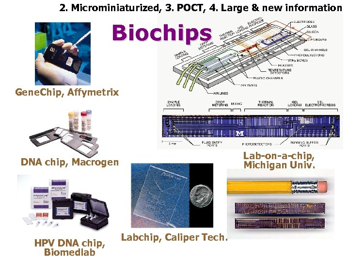 2. Microminiaturized, 3. POCT, 4. Large & new information Biochips Gene. Chip, Affymetrix Lab-on-a-chip,