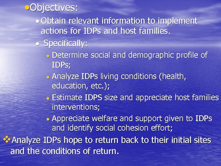 Objectives: Obtain relevant information to implement actions for IDPs and host families. Specifically: