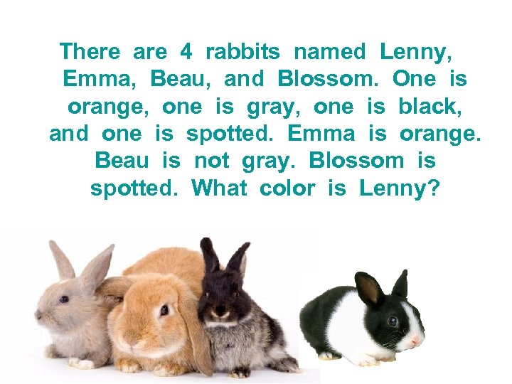 There are 4 rabbits named Lenny, Emma, Beau, and Blossom. One is orange, one