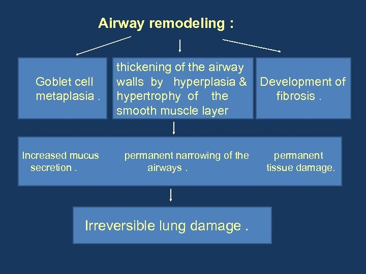 Airway remodeling : Goblet cell metaplasia. thickening of the airway walls by hyperplasia &