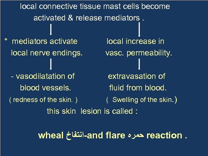 local connective tissue mast cells become activated & release mediators. * mediators activate local