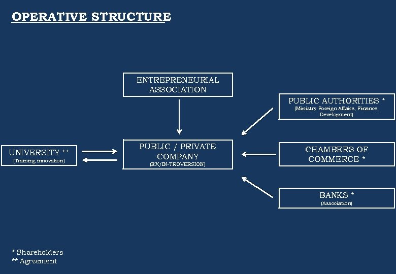 OPERATIVE STRUCTURE ENTREPRENEURIAL ASSOCIATION PUBLIC AUTHORITIES * (Ministry Foreign Affairs, Finance, Development) UNIVERSITY **