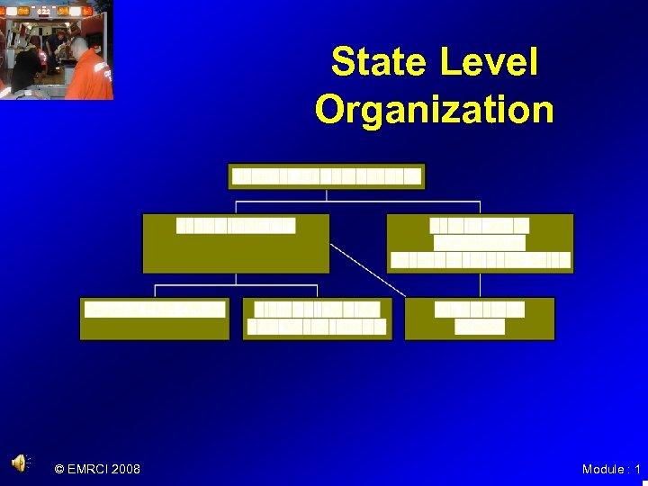State Level Organization © EMRCI 2008 Module : 1