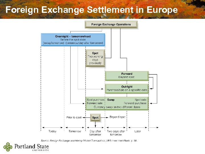 Foreign Exchange Settlement in Europe
