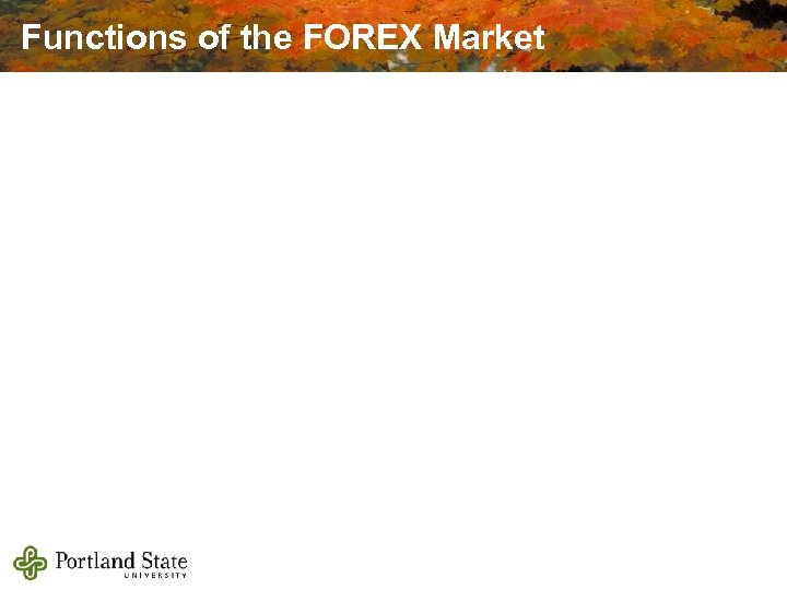 Functions of the FOREX Market