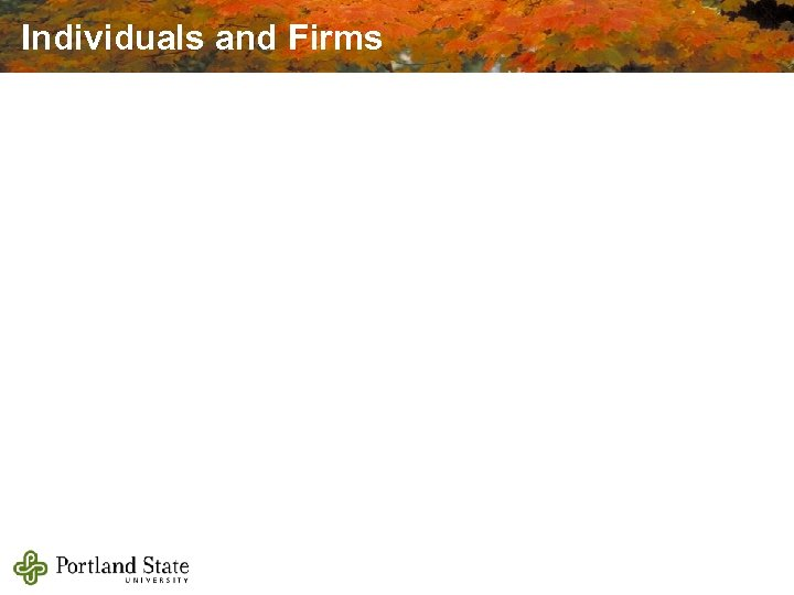 Individuals and Firms
