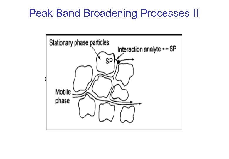 Peak Band Broadening Processes II
