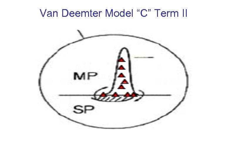 """Van Deemter Model """"C"""" Term II"""