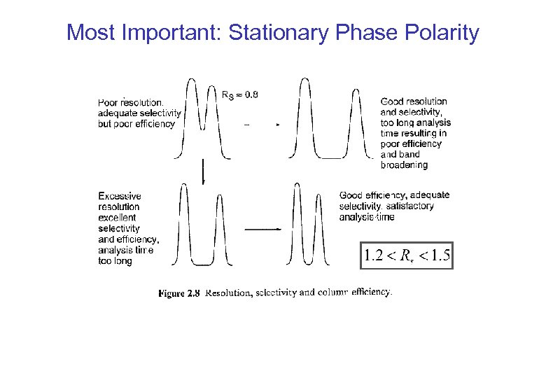 Most Important: Stationary Phase Polarity