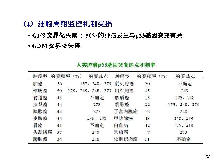 (4)细胞周期监控机制受损 • G 1/S 交界处失察: 50%的肿瘤发生与p 53基因突变有关 • G 2/M 交界处失察 32