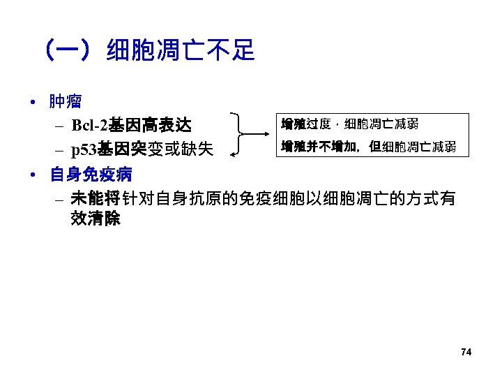 (一)细胞凋亡不足 • 肿瘤 增殖过度,细胞凋亡减弱 – Bcl-2基因高表达 增殖并不增加,但细胞凋亡减弱 – p 53基因突变或缺失 • 自身免疫病 – 未能将针对自身抗原的免疫细胞以细胞凋亡的方式有