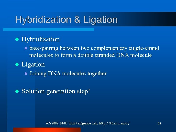 Hybridization & Ligation l Hybridization ¨ base-pairing between two complementary single-strand molecules to form