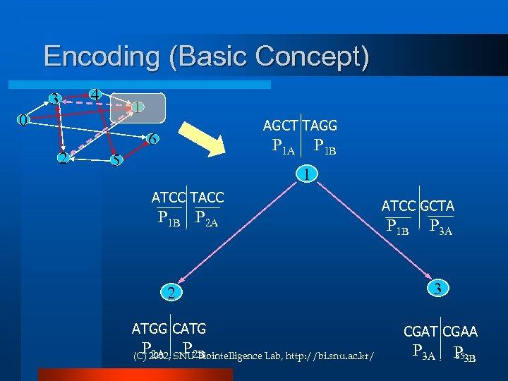 Encoding (Basic Concept) 4 3 1 0 AGCT TAGG 6 2 P 1 A