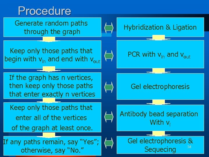 Procedure Generate random paths through the graph Hybridization & Ligation Keep only those paths