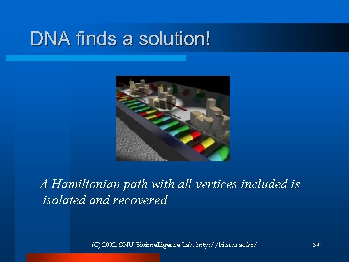 DNA finds a solution! A Hamiltonian path with all vertices included is isolated and