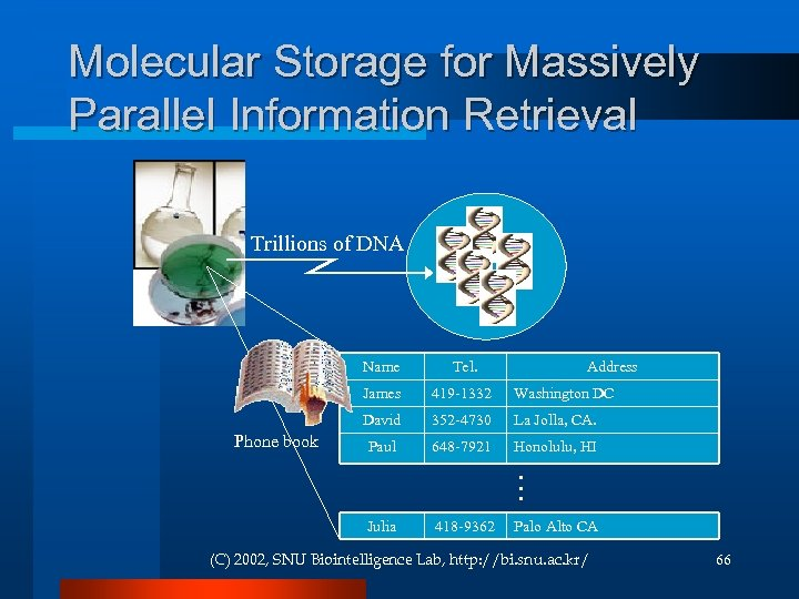 Molecular Storage for Massively Parallel Information Retrieval Trillions of DNA Name James Address Washington