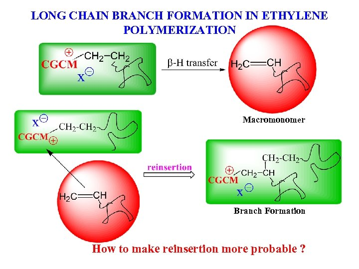 LONG CHAIN BRANCH FORMATION IN ETHYLENE POLYMERIZATION Macromonomer Branch Formation How to make reinsertion