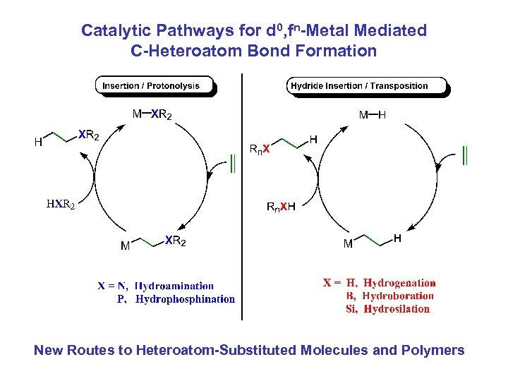 Catalytic Pathways for d 0, fn-Metal Mediated C-Heteroatom Bond Formation New Routes to Heteroatom-Substituted