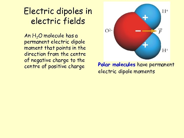 Electric dipoles in electric fields An H 2 O molecule has a permanent electric