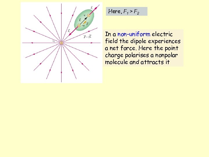Here, F 1 > F 2 In a non-uniform electric field the dipole experiences