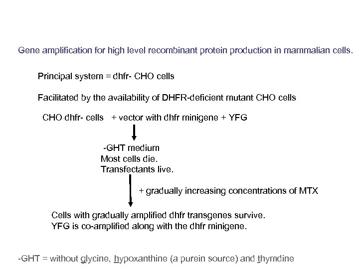 Gene amplification for high level recombinant protein production in mammalian cells. Principal system =
