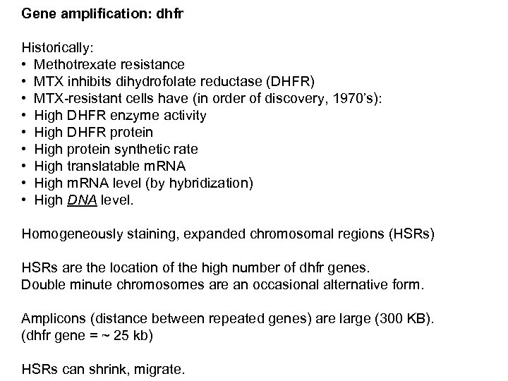 Gene amplification: dhfr Historically: • Methotrexate resistance • MTX inhibits dihydrofolate reductase (DHFR) •
