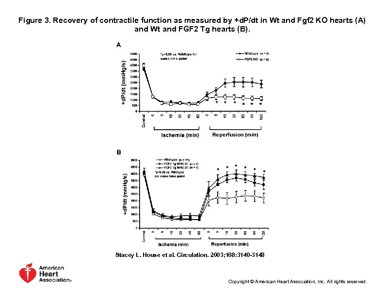 Figure 3. Recovery of contractile function as measured by +d. P/dt in Wt and