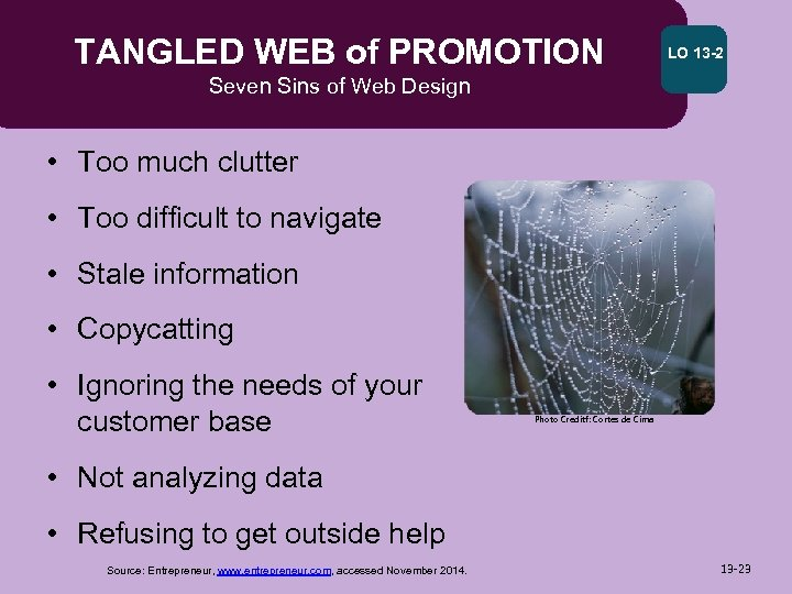 TANGLED WEB of PROMOTION LO 13 -2 Seven Sins of Web Design • Too