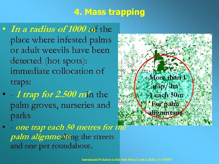 4. Mass trapping • In a radius of 1000 m the of place where