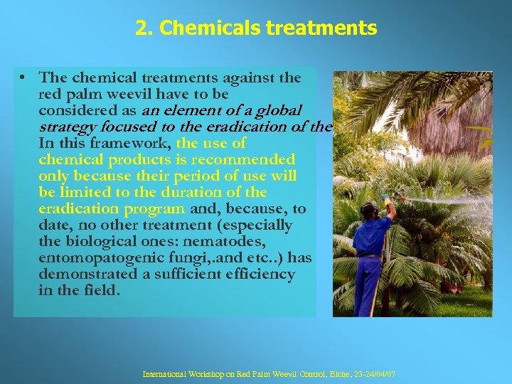 2. Chemicals treatments • The chemical treatments against the red palm weevil have to