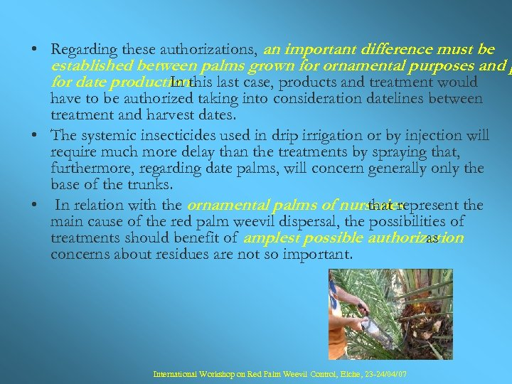 • Regarding these authorizations, an important difference must be established between palms grown